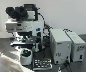 Olympus Microscope Bx61 Fish Fluorescence In Situ Hybridization