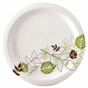 Dixie Paper Plates 10 Diameter Pathways Carton Of 500