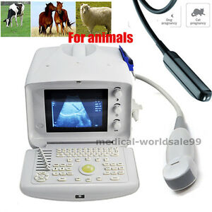 Veterinary Animal Ultrasound Scanner Machine Micro convex Rectal 2 Probe 3d Sale