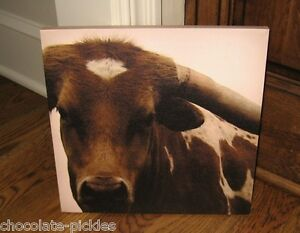 Brown Cow Longhorn Canvas Wall Picture Primitive French Country Farmhouse Decor