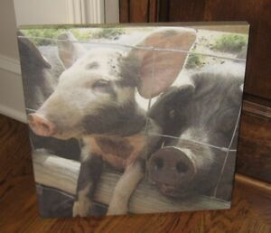 Pig Pen Hog Canvas Wall Mantel Picture Farmhouse Primitive French Country Decor