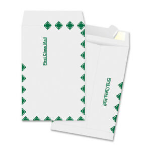 Myofficeinnovations Catalog Envelopes First Class 10 x13 100 bx White 3254235