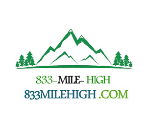 Mile high Premium Vanity Toll Free Numbers Matching Top Domain Last One Left 800