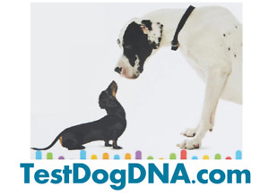 Premium Top Pet Dna Domain Name Surging Market In Pet And Dna Field Make Offer