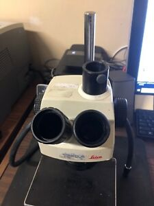 Leica Stereozoom 6 Photo With Eyepieces On Table Stand W Nikon Smz 2t For Parts