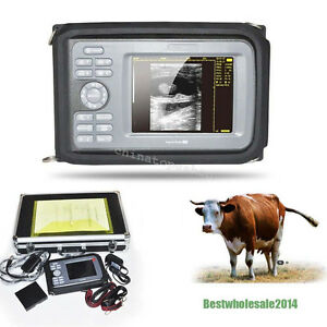 Veterinary Surgery Digital Ultrasound Scanner Machine Animal Rectal Probe Box