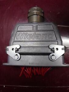 Wieland Bamberg 24 Pin 2 Piece Hardy Multipole Connector