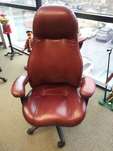 Lifeform Ultimate Ergonomic High Back Executive Office Chair Used