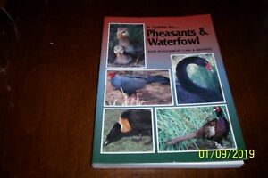 Guide To Pheasants Waterfowl Dr Danny Brown Egg Hatching Chicken Turkey