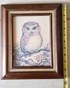 Owl Picture In Wooden Frame