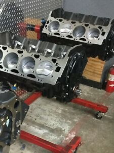 454 496 Stroker Shortblock Crate Engine