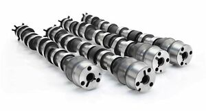 Comp Cams 191160 F50cy Nsr Na3h 126 Camshaft Set For 5 0l Ford Coyote Engines