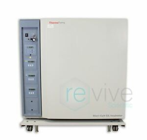 Thermo Forma 3033 Steri cult Co2 Incubator