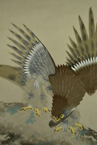 Hanging Scroll Japanese Painting Japan Hawk Pine Vintage Old Art Picture D372