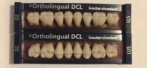 Ivoclar Vivadent Ortholingual Dcl 2 Cards Of D2 Teeth For Dental Lab Materials