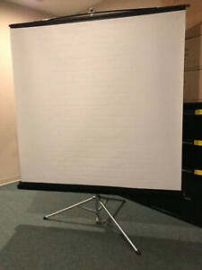 Draper 70 Matte White Portable Industrial Projection Screen With Carpeted Case