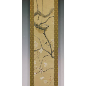 Japanese Painting Hanging Scroll Japan Nightingale Plum Original Antique 421n