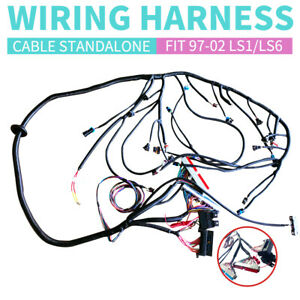 New 1997 2002 Dbc Ls1 Standalone Wiring Harness With T56 Or Non electric Trans