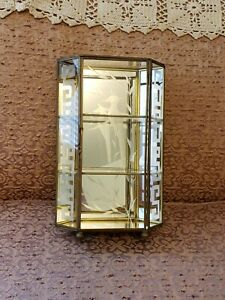 Vintage Brass Glass Miniatures Display Case Shelf Etched