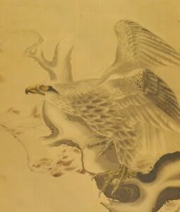 Japanese Painting Hanging Scroll Hawk Aged Old Art Picture Vintage Japan C714