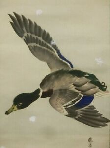 Hanging Scroll Japanese Painting Japan Wild Goose Duck Vintage Antique Art D299
