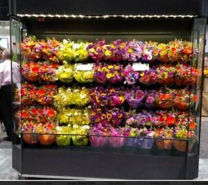 Floral Display Cooler Flower Merchandiser Commercial Refrigerated Flower Fridge