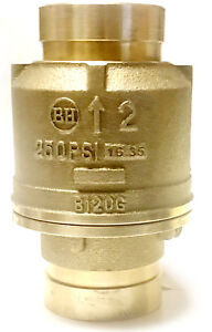 2 Grooved Check Valve 250 Psi Spring Loaded Fire Protection Pumps Ul fm