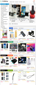 Ready Made Drop Shipping Website Hosting Set Up Phone Stores 1000 Products