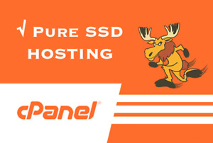 Cloud Business Cpanel Web Hosting Fast Ssd With Softaculous Free Comodo Ssl