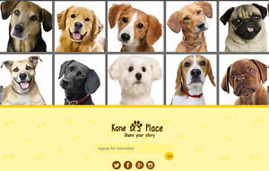 Dog Social Community Website Free Installation free Hosting
