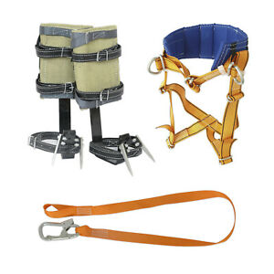 Tree Climbing Gear Spikes Harness And Safety Lanyard Kit
