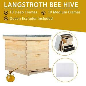 Complete Langstroth Bee Hive 10 frame 1 Deep Box 1 Medium Box Queen Excluder