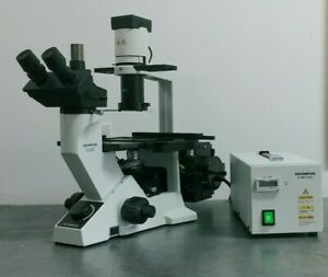 Olympus Microscope Ck40 With Fluorescence Phase Contrast And Trinocular Head