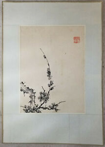 Antique Chinese Watercolor Ink Painting Paper Signed Prunus Republic Scroll