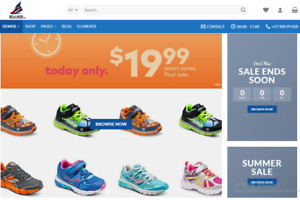 Shoes Store Turnkey Profitable Dropshipping Website