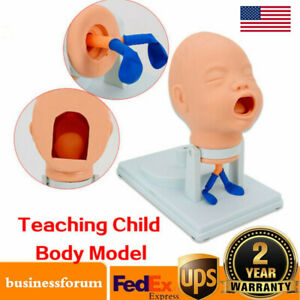 Baby Infant Intubation Manikin Airway Management Oral Nasal Demo 360 Swing Head