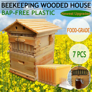 7pcs Hot Flowing Honey Hive Beehive Frames Beekeeping Brood Cedarwood Box Set