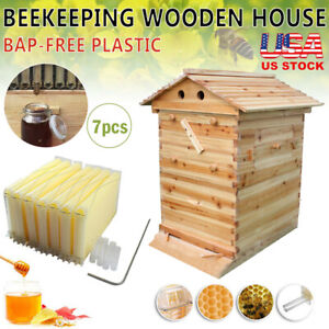 Bee Hive House Frame Beekeeping Kit 7pcs Beehive Frames Wooden House Brood Box