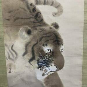 Japanese Painting Hanging Scroll Japan Art Tiger Antique Old Picture Aged E011