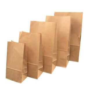 Kraft Brown Paper Bags Reusable Grocery Bags Great Gift Bag Recyclable Shopping