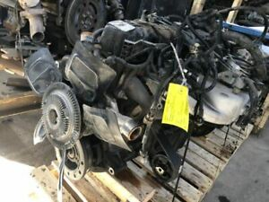Engine 4 0l 6 242 Vin S 8th Digit Fits 99 00 Grand Cherokee 1384879