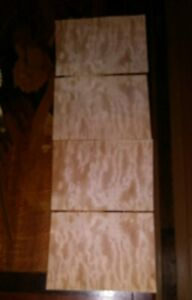 4 Pieces Of Quilted Maple Wood Veneer 7 7 8 X 5 3 4 Each Buckled