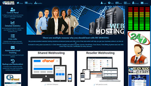 Ready Made Style 3005 Reseller Webhosting Website Free Billing System Included