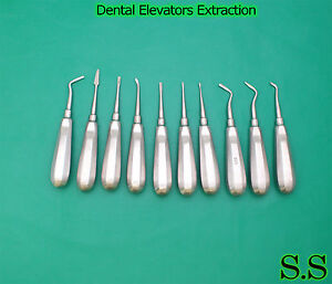 60 Dental Elevators Extraction Surgical Instruments New