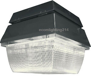 100 Watt Induction Gas Station Canopy Ceiling Light