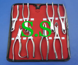 Kit Of 8 Pcs Extracting Forceps Dental Surgical Instruments