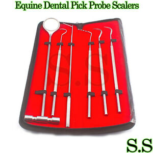 6 Pcs Equine Dental Pick Probe Scalers Veterinary Instruments New Kit