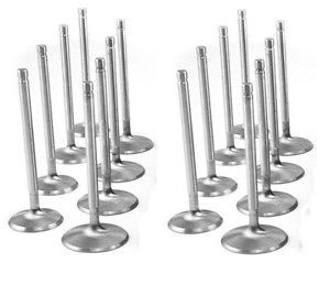 Cadillac 331 365 Intake Exhaust Valves Set 16 1956 And Valve Guides