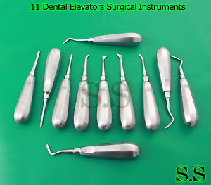 11 Dental Elevators Extraction Surgical Instruments New