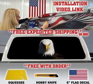 Bald Eagle Pick up Truck Rear Window Graphic Decal 50 50 Perforated Vinyl